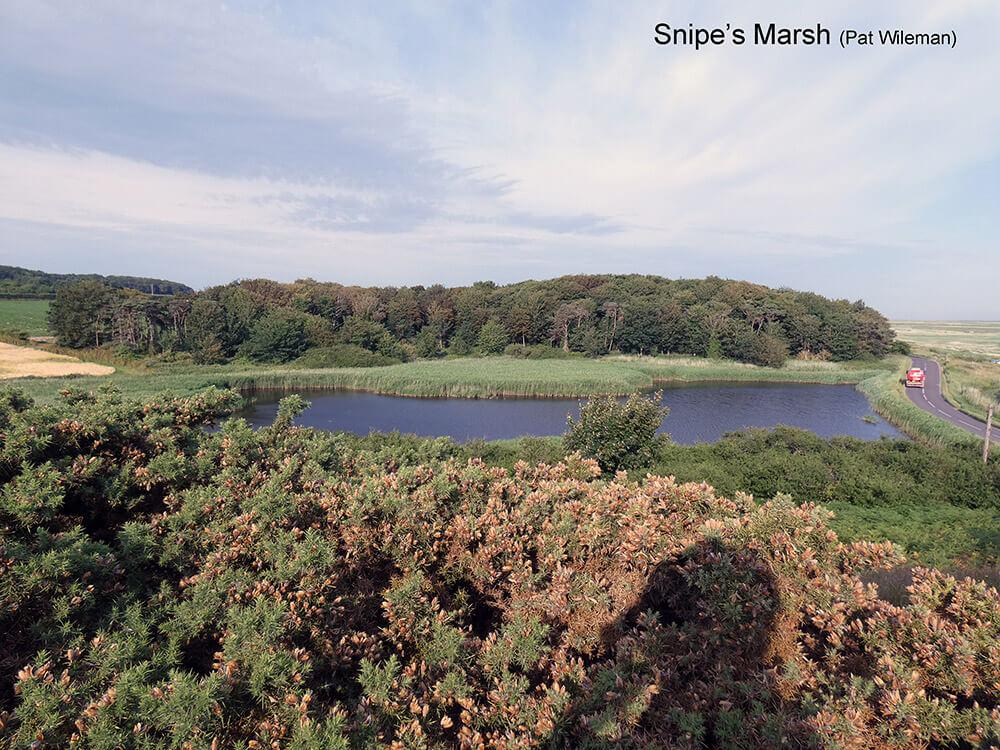 Cley-Marshes-E-Snipe's-Marsh-P1000706