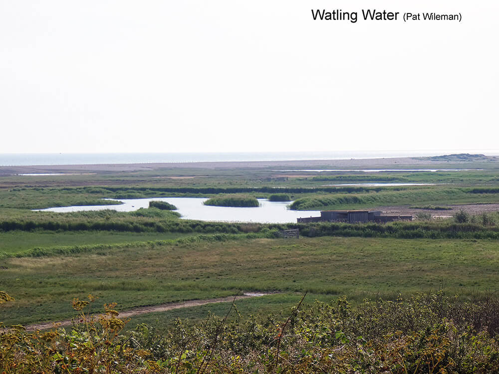 Cley-Marshes-E-Watling-Water-P1000830