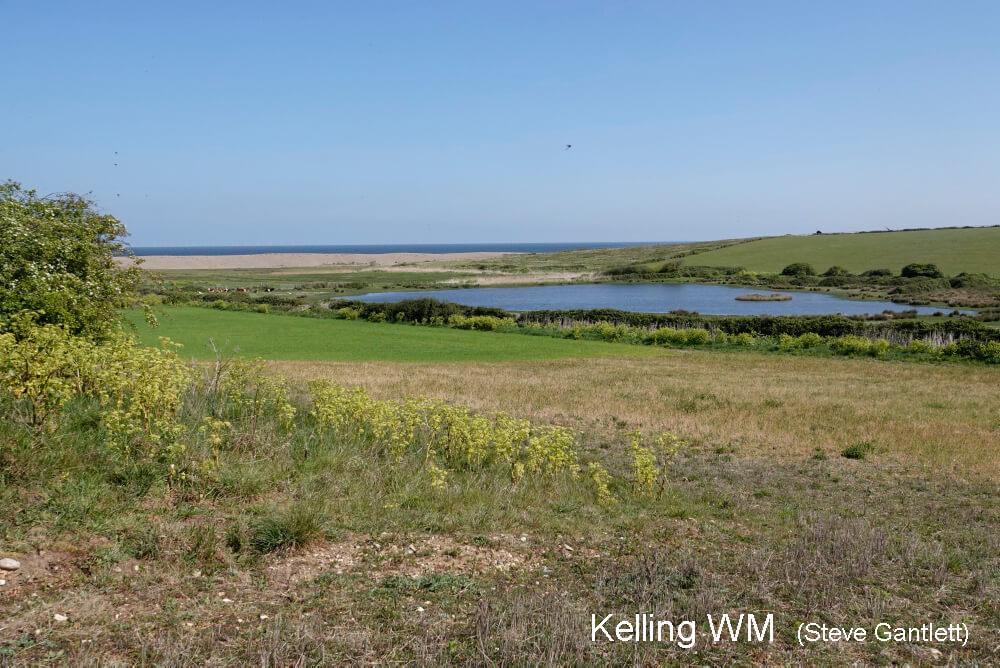 Kelling WM 8265-1000